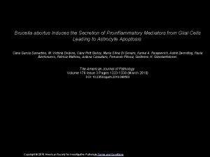 Brucella abortus Induces the Secretion of Proinflammatory Mediators