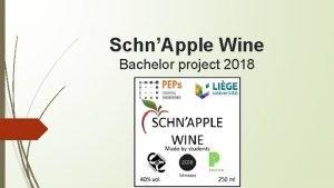 SchnApple Wine Bachelor project 2018 SchnApple Wine Budget