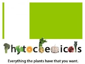 What Are Phytochemicals And how do the help