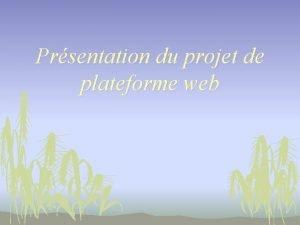 Prsentation du projet de plateforme web Une plateforme