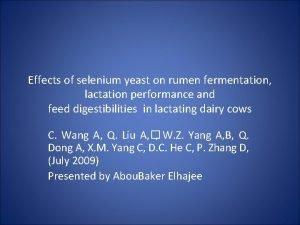 Effects of selenium yeast on rumen fermentation lactation