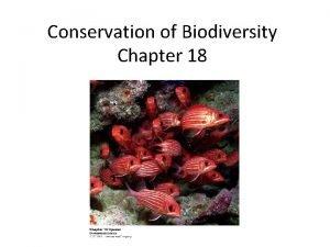 Conservation of Biodiversity Chapter 18 Modern Conservation Legacies