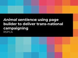 Animal sentience using page builder to deliver transnational