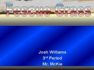Josh Williams 3 rd Period Mr Mc Kie
