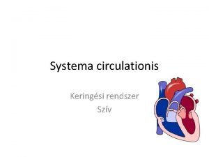 Systema circulationis Keringsi rendszer Szv Szv felptsrl 4
