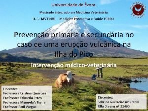 Universidade de vora Mestrado integrado em Medicina Veterinria