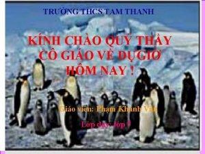 TRNG THCS TAM THANH KNH CHO QU THY