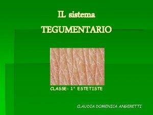 IL sistema TEGUMENTARIO CLASSE 1 ESTETISTE CLAUDIA DOMENICA
