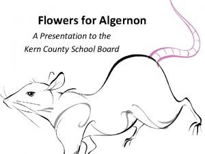 Flowers for Algernon A Presentation to the Kern