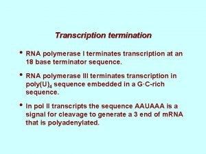 Transcription termination RNA polymerase I terminates transcription at