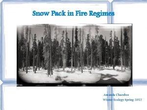 Snow Pack in Fire Regimes Amanda Charobee Winter