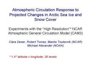 Atmospheric Circulation Response to Projected Changes in Arctic