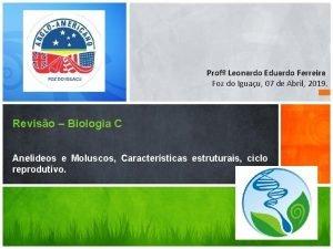 Prof Leonardo Eduardo Ferreira Foz do Iguau 07