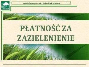 Agencja Restrukturyzacji i Modernizacji Rolnictwa PATNO ZA ZAZIELENIENIE