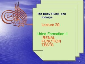 The Body Fluids and Kidneys Lecture 20 Urine