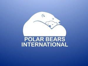 Polar Bear Research Why do scientists study polar