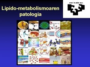 Lipidometabolismoaren patologia Lipidometabolismoaren patologia Sarrera HiperlipemiakHiperlipoproteinemiak HipolipemiakHipolipoproteinemiak Ezohizko