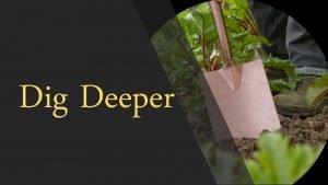 Dig Deeper unl cking REVELATION Unlocking Revelation HERMENEUTICAL
