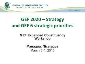 GEF 2020 Strategy and GEF 6 strategic priorities