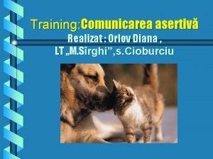 Training Comunicarea asertiv Realizat Orlov Diana LT M