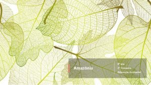 6 ano Amaznia 2 Trimestre Educao Ambiental Amaznia