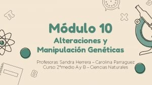 Mdulo 10 Alteraciones y Manipulacin Genticas Profesoras Sandra