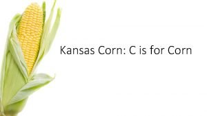 Kansas Corn C is for Corn Agriculture the