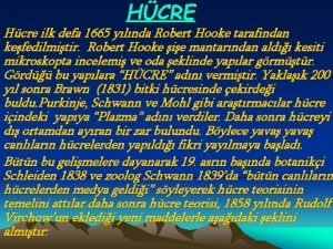 HCRE Hcre ilk defa 1665 ylnda Robert Hooke