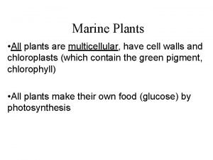 Marine Plants All plants are multicellular have cell