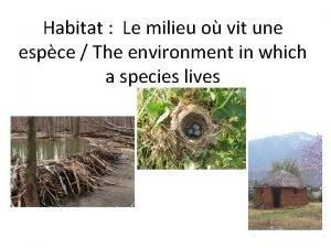 Habitat Le milieu o vit une espce The