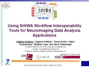Using SHIWA Workflow Interoperability Tools for Neuroimaging Data