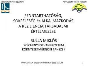 Szchenyi Istvn Egyetem Krnyezetmrnki Tanszk FENNTARTHATSG SOKFLESG s