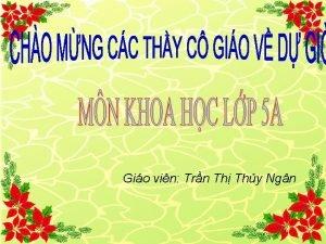 Gio vin Trn Th Thy Ngn Th nm