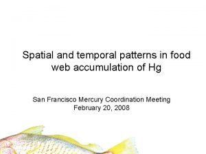 Spatial and temporal patterns in food web accumulation