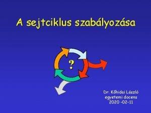 A sejtciklus szablyozsa Dr Khidai Lszl egyetemi docens