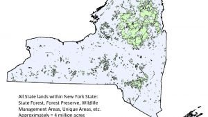 All State lands within New York State State