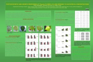 PHOTOSYNTHETIC AND GROWTH RESPONSES OF Populus CLONES I214