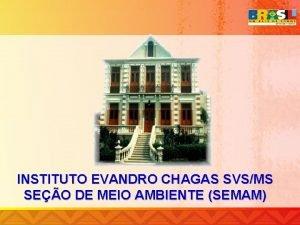 INSTITUTO EVANDRO CHAGAS SVSMS SEO DE MEIO AMBIENTE