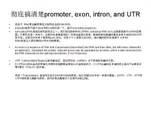promoter exon intron and UTR RNADNA promoterintronExonnoncoding sequence