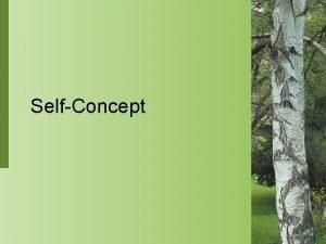 SelfConcept SelfConcept Selfconcept is an individuals perception of