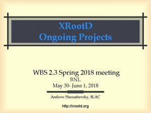 XRoot D Ongoing Projects WBS 2 3 Spring