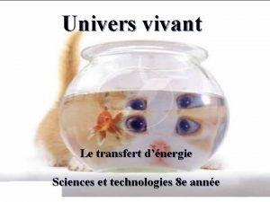 Univers vivant Le transfert dnergie Sciences et technologies