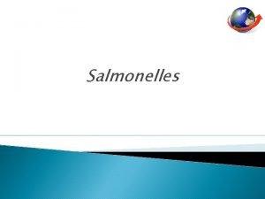 Salmonelles Salmonelles Produits base de viande crue Mis