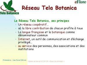 Rseau Tela Botanica Le Rseau Tela Botanica ses
