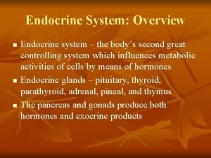 Endocrine System Overview n n n Endocrine system
