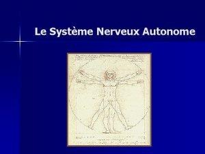 Le Systme Nerveux Autonome SNA Introduction Vision dun