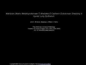 Matrilysin Matrix Metalloproteinase7 Mediates ECadherin Ectodomain Shedding in