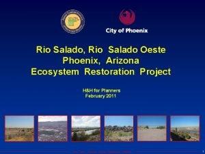 Rio Salado Rio Salado Oeste Phoenix Arizona Ecosystem