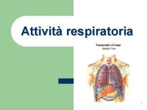 Attivit respiratoria RESPIRAZIONE Scambio tra ossigeno e anidride