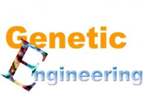 Definition Genetic engineering refers to the scientific process